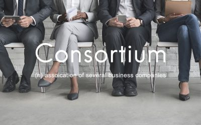 What is a consortium and why do people need it?
